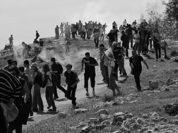 Palestinian and international demonstrators face barrages of Israeli teargas in Bil'in